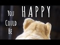 You could be happy~wmv