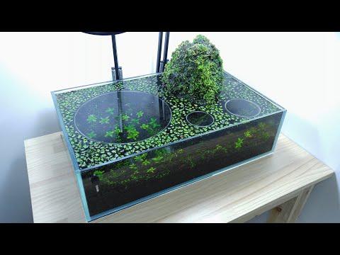 #2 Volcano Filter Betta Aquarium - YES filter, NO CO2, NO Ferts 7.6 Gallon Tank