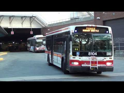 TTC - Eglinton Station Bus Terminal |  Compilation Video #2