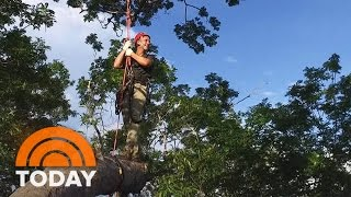 TODAY Takes You Up A 180-Foot Tree In The Amazon | TODAY