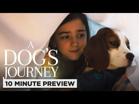 A Dog's Journey | 10 Minute Preview | Film Clip | Own It 8/6 On Digital, 8/20 On Blu-ray & DVD