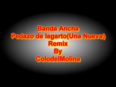 Banda Ancha   Pedazo de Lagarto Una Nueva REMIX By ColodelMolina