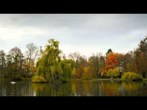 Levinscher Park - Vom Winter zum Herbst
