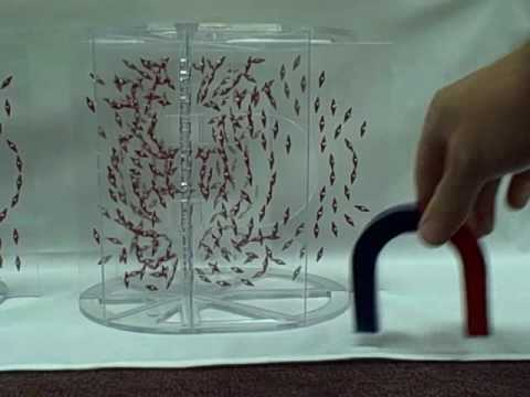 MAGNETIC LINES OF FORCE DEMONSTRATION