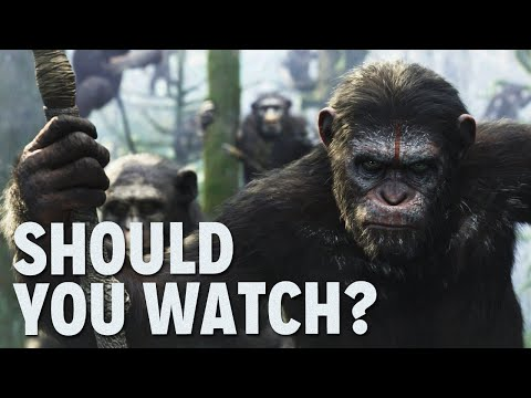 Funny Dawn Of The Planet Of The Apes Review