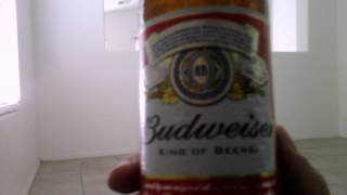 Budweiser Beer Review (Overview)