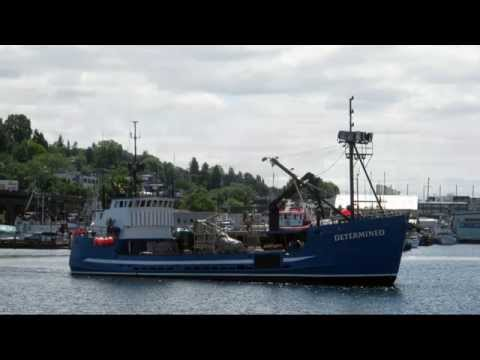Salty Dog Maritime Marketing - Commercial Fishing in the Pacific Northwest