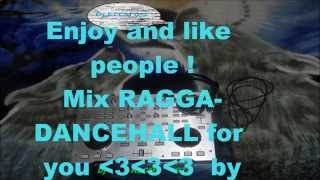 Ragga Dancehall mix by Dj KLCM 972(19.12.14) 2è session