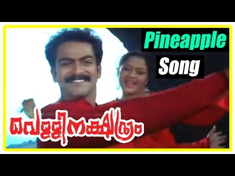 Malayalam Movie | Vellinatchatiram Malayalam Movie | Pineapple Penne Song | Malayalam Movie Song video
