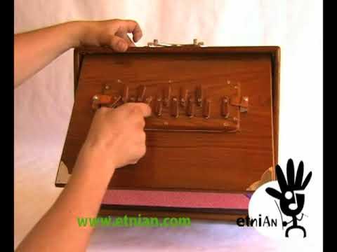 SHRUTI BOX  SH 1