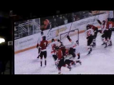 Avery Peterson's Goals-Grand Rapids MN vs Elk River Section 7AA Semi Final -2-23-2013