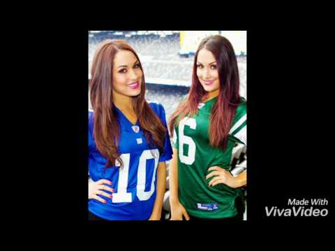 The Bella Twins Song(You can look)+pictures