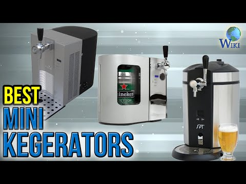 6 Best Mini Kegerators 2017