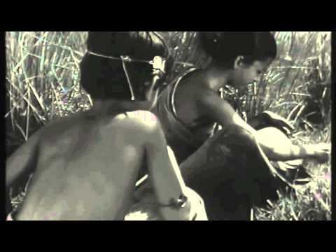 Elephant Stone - Child of Nature (Om Namah Shivaya)