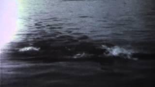 Viaggio con Anita (1979) - Official Trailer