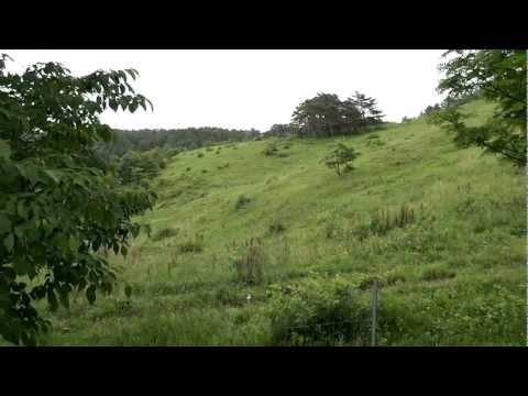 空飛ぶカメラ 「HEXA+NAZA+GPS+自作 ジンバル」テスト0723