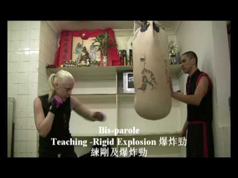 Choy Lee Fut San Da: Sandbag Training Techniques 散打四種包練習 Image 1