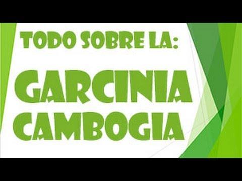 Garcinia Cambogia - Todo Lo Que Necesita Saber Sobre La Garcinia Cambogia