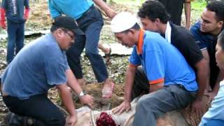 Sembelihan korban 2010 Parlimen Hulu Langat di Sungai Tekali   Sdr  Mohamad Jan Sulong