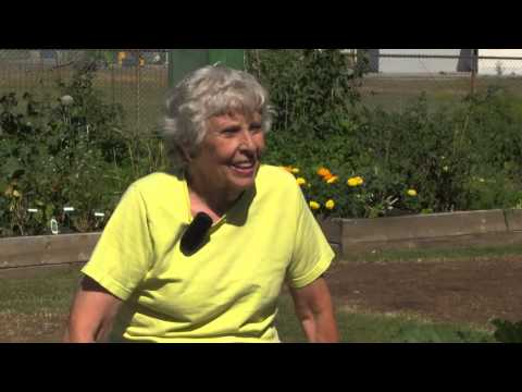JoAnn Mulligan: How Community Gardens Grow, Calgary