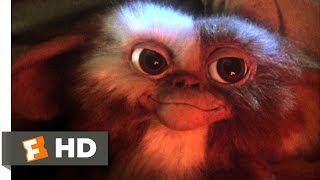 Gremlins (1/6) Movie CLIP - Billy Meets Gizmo (1984) HD