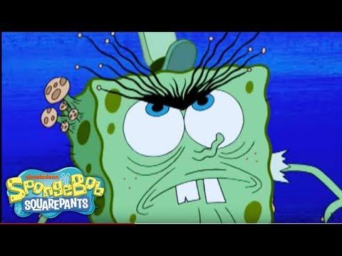 SpongeBob SquarePants Mini: