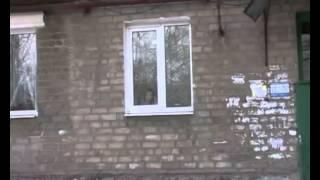 В Широкино шел ожесточенный бой - (видео)