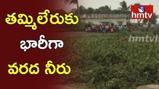 Tammileru Flood | Eluru Aria People Facing problems | West Godavari | hmtv