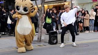 JHKTV] 신촌명물고양이댄스 shin chon special cat k pop dance & dancer (박준학)bang bang bang
