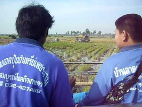 รถเกี่ยวติดหล่มที่เพชรบุรี