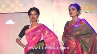 Palam Silks Fashion Show 2016