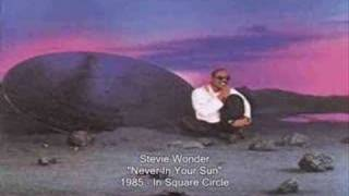 Watch Stevie Wonder Never In Your Sun video