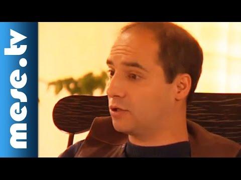 Lázár Ervin: A Kék Meg A Sárga (mesefilm, Esti Mese Gyerekeknek) video