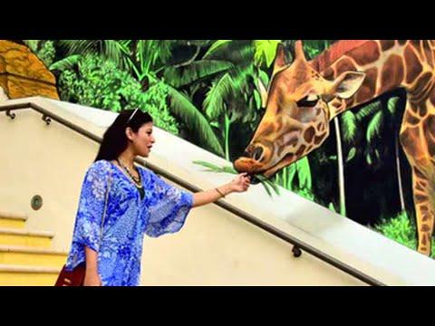 Tour Dubai with Freishia BomanBehram