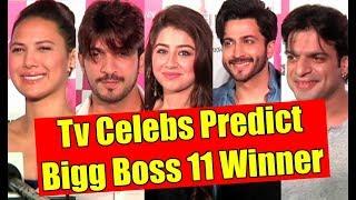 Tv Celebs Reaction On Bigg Boss 11 Winner