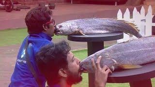 Bigg Boss Telugu Reality Show Episode 38 Update | Star Maa | Hot Star Live | YOYO Cine Talkies