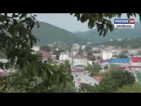 Об истории Новомихайловского