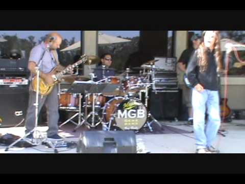 Stranglehold- Ted Nugent (Cover By The Mean Gene B