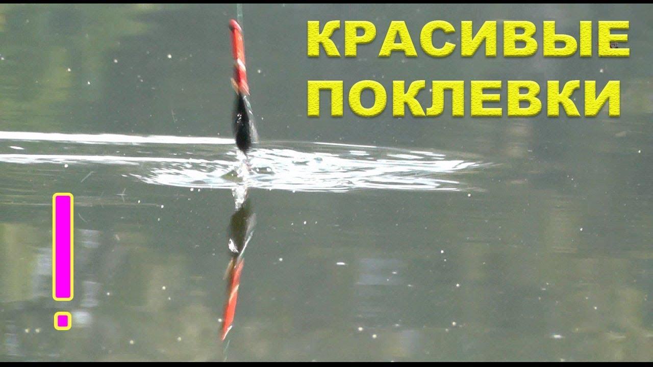 новое в поплавочной ловле