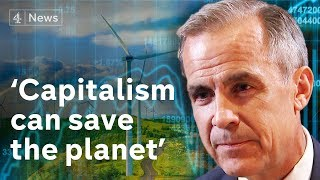 Can capitalism combat climate change? Bank of England says business can benefit from saving planet