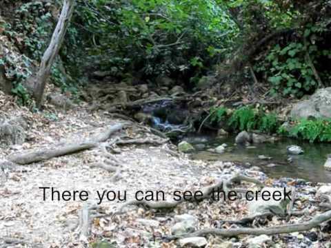 Honeymoon In Israel - Amud Creek Israel Nature Reserve