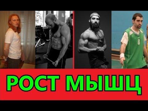 Рост мышц. Тайны раскрыты