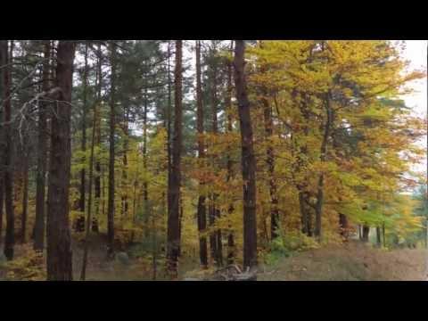 Вокална формация Светоглас - Попой ми, Янке невесто