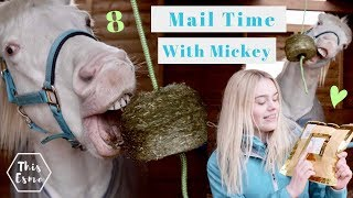 Mail Time With Mickey 8 | This Esme