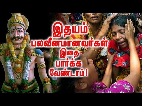 மனித ரத்தம்  குடிக்கும் சுடலை மாடன் !   Sudalai Madan !