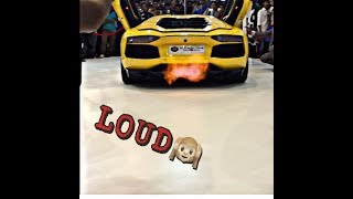 Lamborghini Aventador Loud Exhaust in Autocar Performance Show 2017