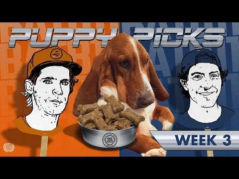 BATB 11 | Puppy Picks: Week 3