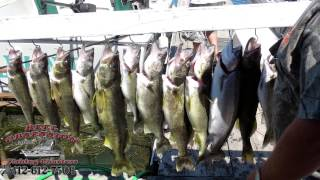 Reel Obsessions Fishing Charters (Lake Erie) Slidshow