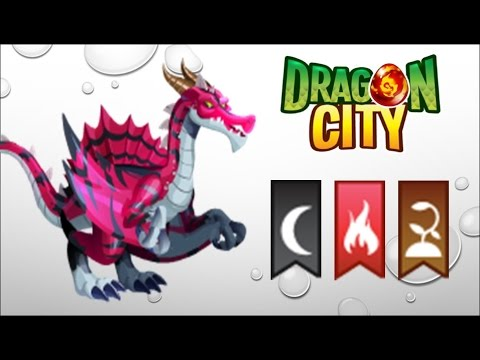 Dragon City - Getting Predator Dragon 100% (No Hack)