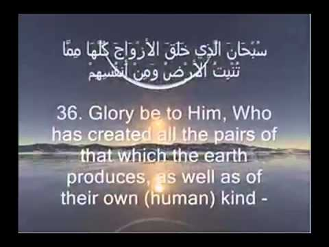 Sura Yasin Excellent And Very Emotional Holy Quran Recitation video